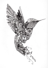 Tattoo-Design Kolibri